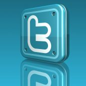 Metallic Twitter Logo