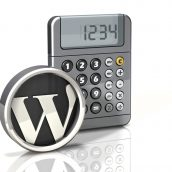 Calculator Icon: Wordpress