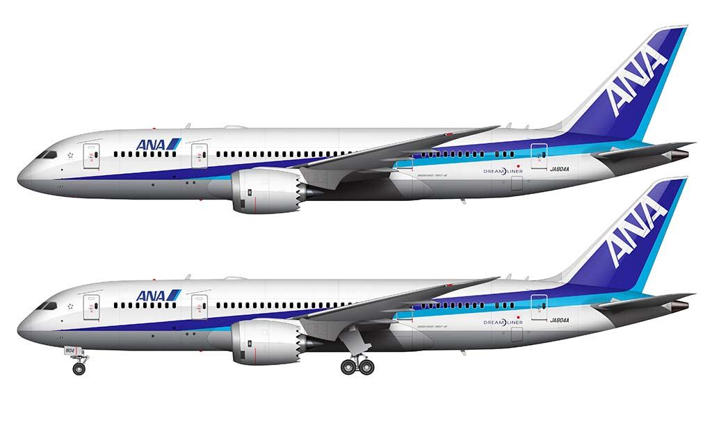 ANA 787-8 experimental livery