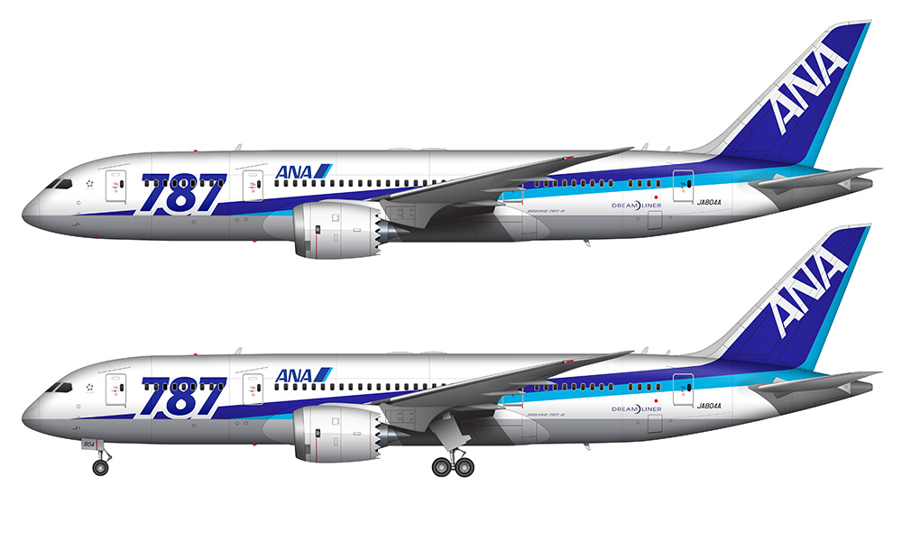 ANA Boeing 787 illustration