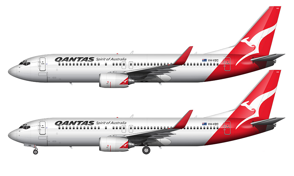 QANTAS 737-800 illustrations over white background